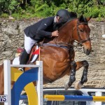 FEI World Jumping Challenge Bermuda, February 22 2015-74