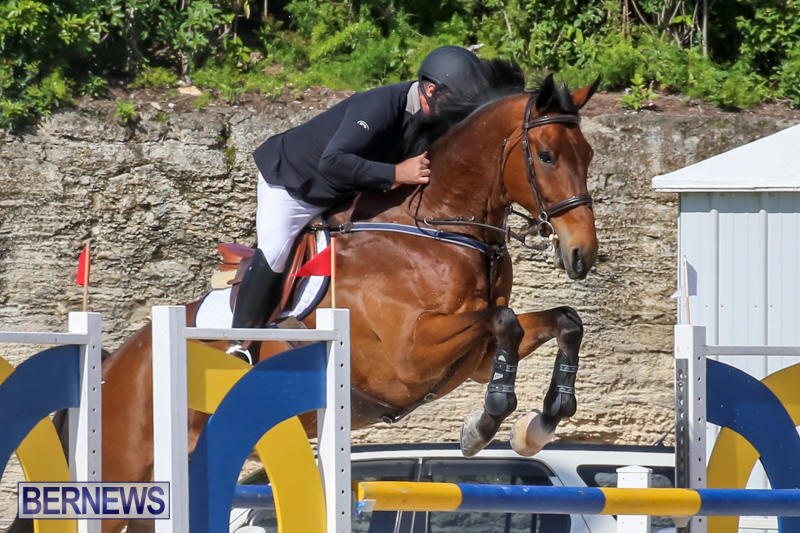 FEI-World-Jumping-Challenge-Bermuda-February-22-2015-74