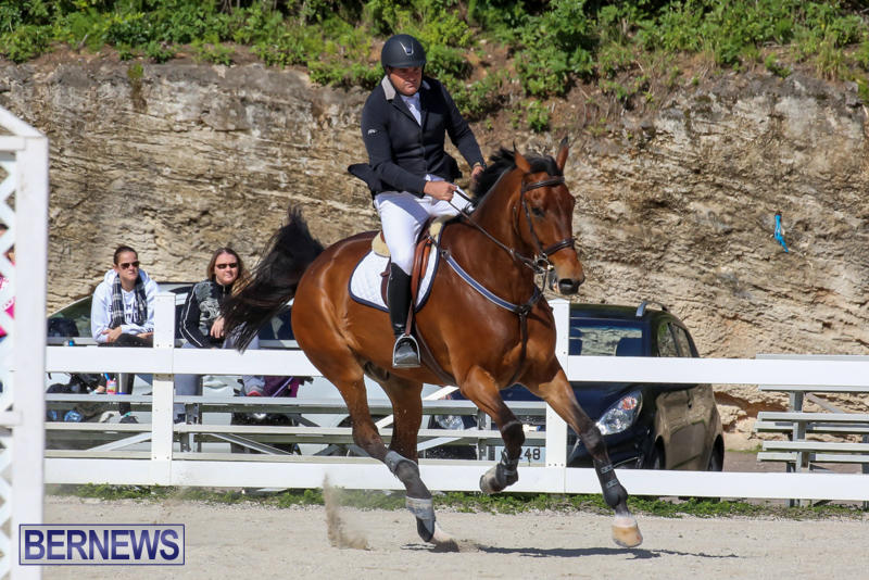 FEI-World-Jumping-Challenge-Bermuda-February-22-2015-76