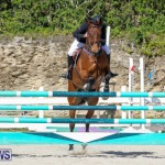 FEI World Jumping Challenge Bermuda, February 22 2015-77