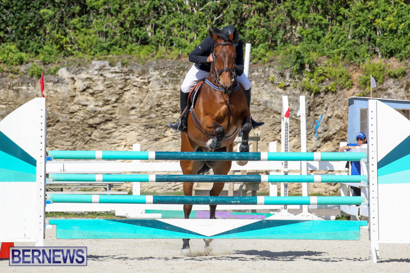 FEI-World-Jumping-Challenge-Bermuda-February-22-2015-77