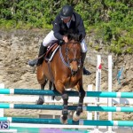 FEI World Jumping Challenge Bermuda, February 22 2015-78