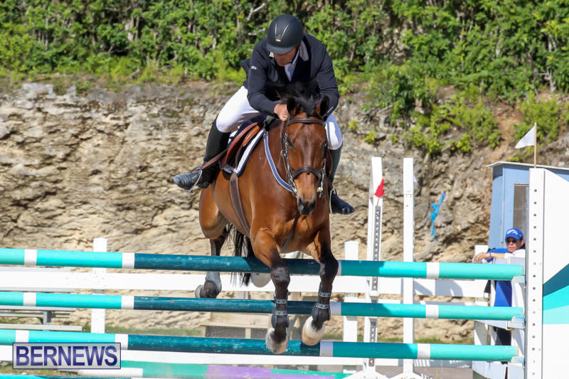FEI-World-Jumping-Challenge-Bermuda-February-22-2015-78