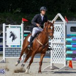 FEI World Jumping Challenge Bermuda, February 22 2015-79