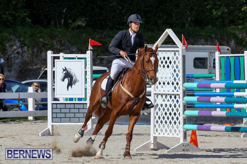 FEI-World-Jumping-Challenge-Bermuda-February-22-2015-79