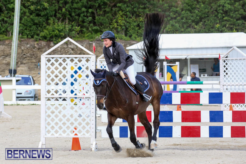 FEI-World-Jumping-Challenge-Bermuda-February-22-2015-8