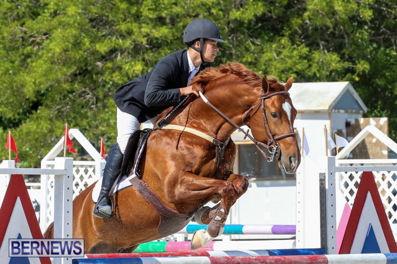 FEI-World-Jumping-Challenge-Bermuda-February-22-2015-80