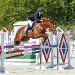 FEI World Jumping Challenge Bermuda, February 22 2015-81