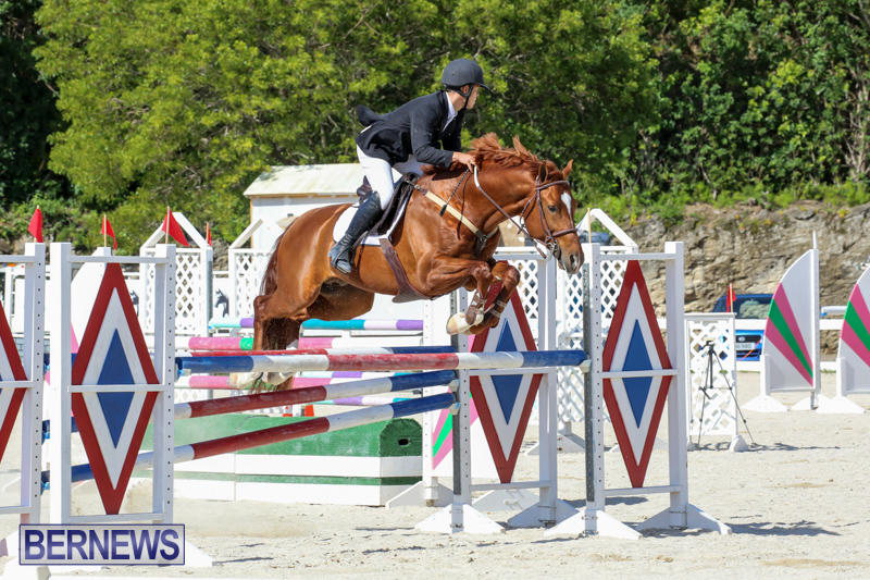 FEI-World-Jumping-Challenge-Bermuda-February-22-2015-81