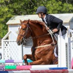 FEI World Jumping Challenge Bermuda, February 22 2015-82