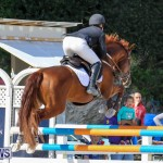 FEI World Jumping Challenge Bermuda, February 22 2015-83