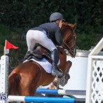 FEI World Jumping Challenge Bermuda, February 22 2015-84