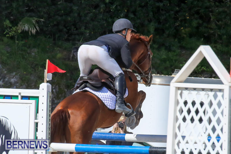 FEI-World-Jumping-Challenge-Bermuda-February-22-2015-84