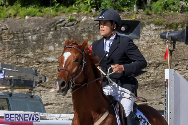 FEI-World-Jumping-Challenge-Bermuda-February-22-2015-85