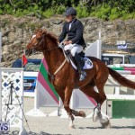 FEI World Jumping Challenge Bermuda, February 22 2015-86