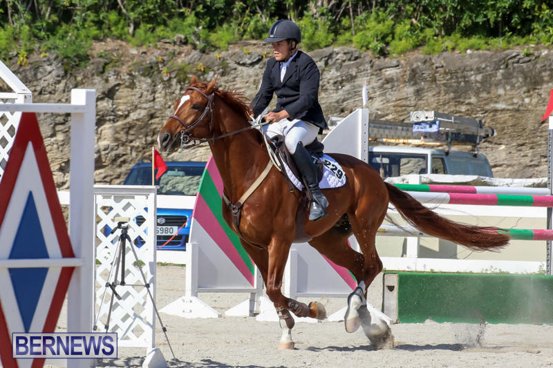 FEI-World-Jumping-Challenge-Bermuda-February-22-2015-86
