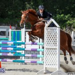 FEI World Jumping Challenge Bermuda, February 22 2015-87