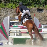 FEI World Jumping Challenge Bermuda, February 22 2015-88