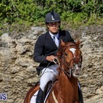 FEI World Jumping Challenge Bermuda, February 22 2015-89