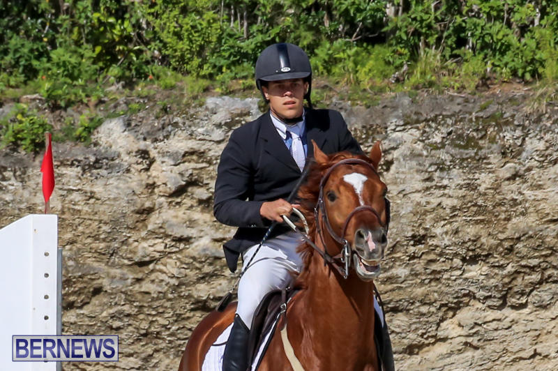 FEI-World-Jumping-Challenge-Bermuda-February-22-2015-89