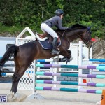 FEI World Jumping Challenge Bermuda, February 22 2015-9
