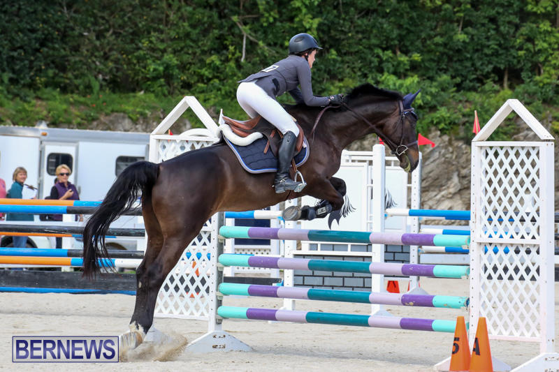FEI-World-Jumping-Challenge-Bermuda-February-22-2015-9
