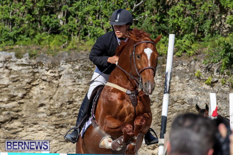 FEI-World-Jumping-Challenge-Bermuda-February-22-2015-90