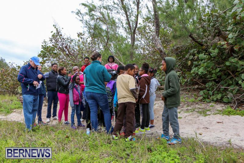 National-Trust-Walk-Spittal-Pond-Bermuda-February-17-2015-14