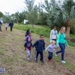 National Trust Walk Spittal Pond Bermuda, February 17 2015-17