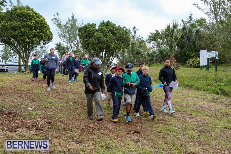 National-Trust-Walk-Spittal-Pond-Bermuda-February-17-2015-2