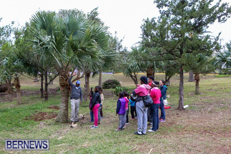 National-Trust-Walk-Spittal-Pond-Bermuda-February-17-2015-8