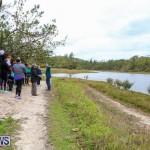 National Trust Walk Spittal Pond Bermuda, February 17 2015-9