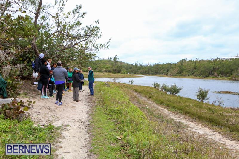 National-Trust-Walk-Spittal-Pond-Bermuda-February-17-2015-9