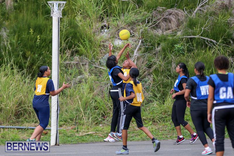Netball-Bermuda-February-21-2015-1