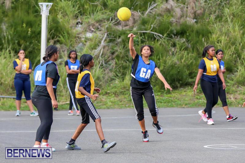 Netball-Bermuda-February-21-2015-10