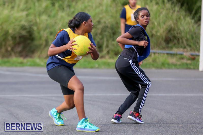 Netball-Bermuda-February-21-2015-11