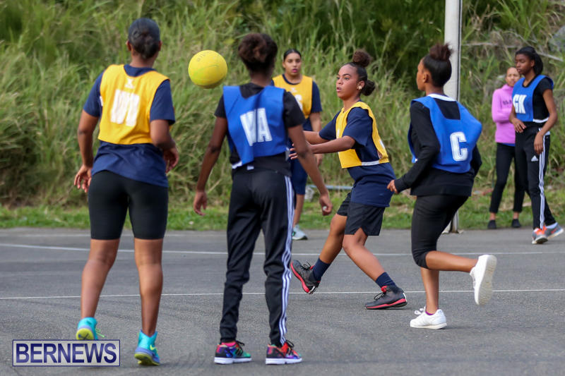 Netball-Bermuda-February-21-2015-12