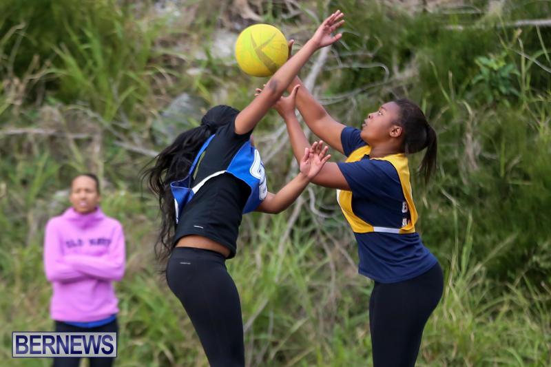 Netball-Bermuda-February-21-2015-14