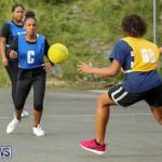 Netball Bermuda, February 21 2015-17