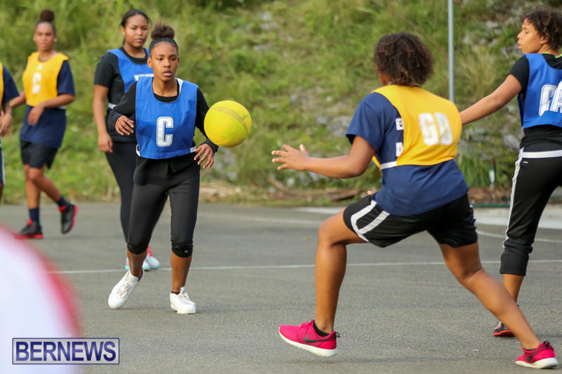 Netball-Bermuda-February-21-2015-17