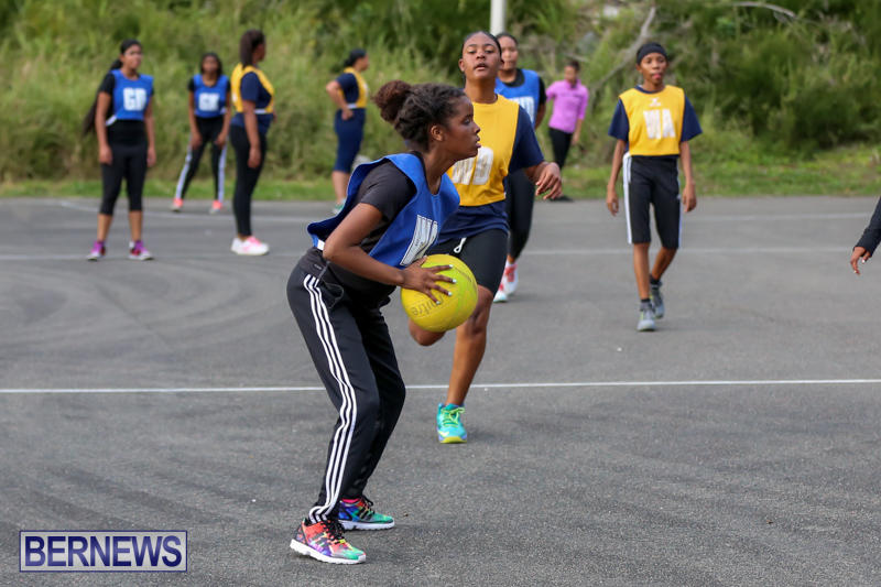 Netball-Bermuda-February-21-2015-2