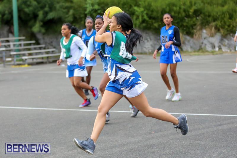 Netball-Bermuda-February-21-2015-33