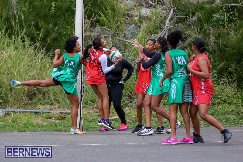 Netball-Bermuda-February-21-2015-34