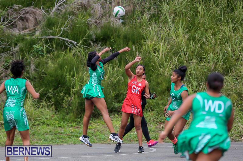 Netball-Bermuda-February-21-2015-36