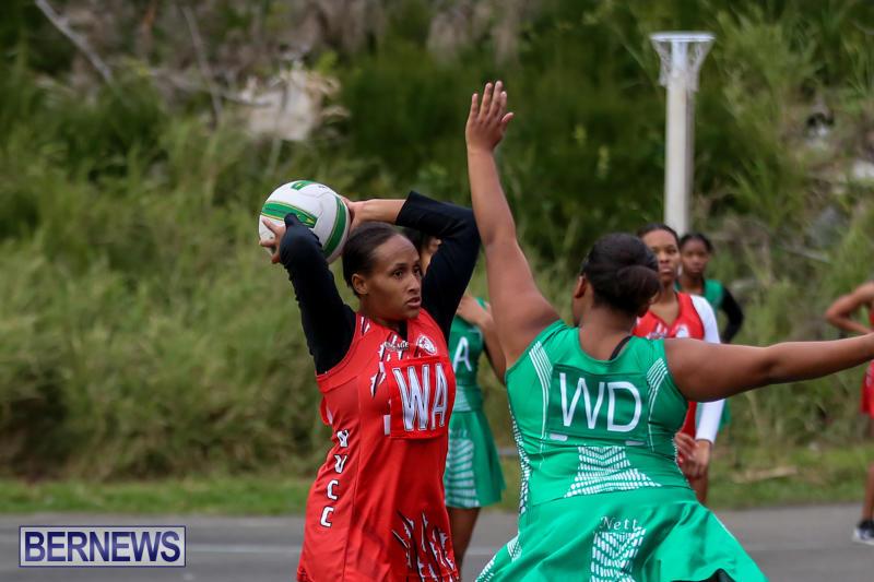 Netball-Bermuda-February-21-2015-38