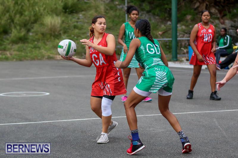 Netball-Bermuda-February-21-2015-39