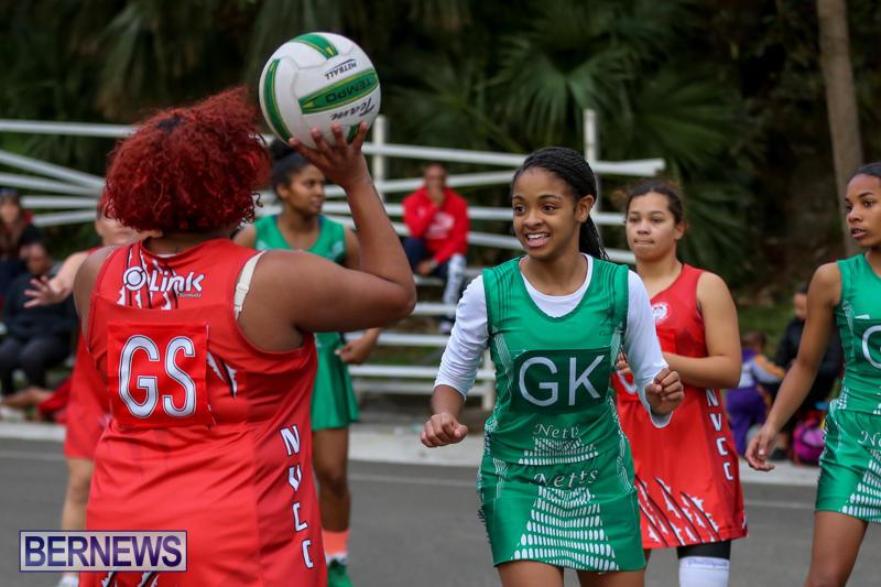 Netball-Bermuda-February-21-2015-42