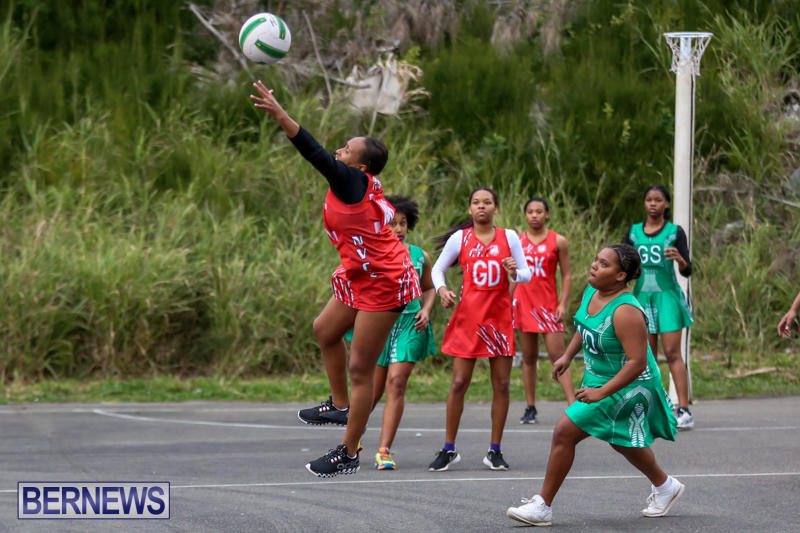 Netball-Bermuda-February-21-2015-48