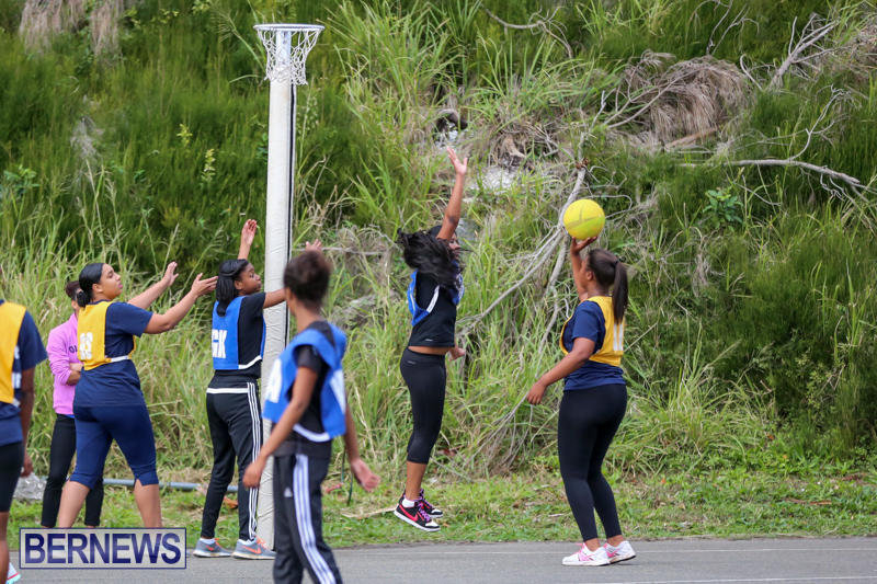 Netball-Bermuda-February-21-2015-6