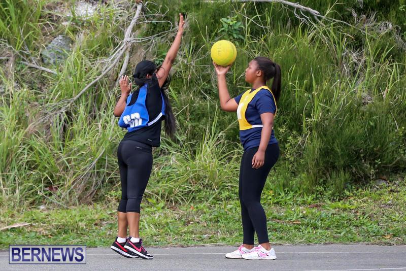 Netball-Bermuda-February-21-2015-8